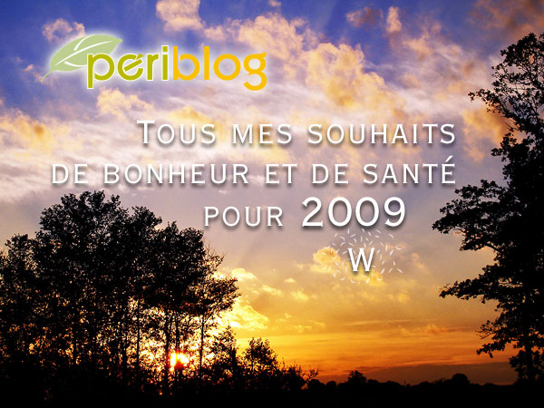 Meilleurs vœux de bonheur et de santé pour 2009