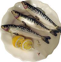 Sardines en porcelaine au musée du Périgord