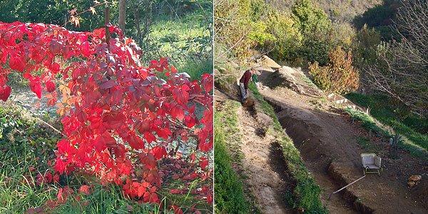 Couleurs d'automne à Castelnaud et Monsieur qui creuse pour trouver son bonheur